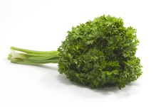 Free Fresh Curvy Parsley Stock Photography - 2310892