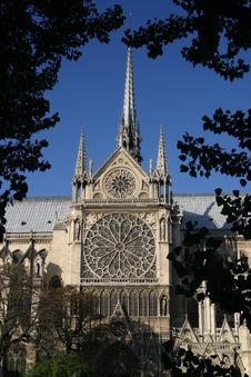 Free Notre Dame Cathedral And Trees Royalty Free Stock Images - 2310959