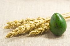 Free Wheat Ears And Green Egg Stock Image - 2311141