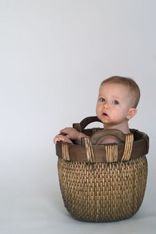 Free Basket Baby Royalty Free Stock Photo - 2313015