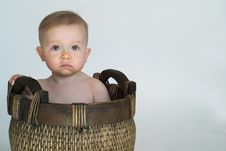 Free Basket Baby Royalty Free Stock Photos - 2313018