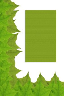 Free Green Leafs Frame Royalty Free Stock Image - 2315096