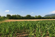 Free Countryside Ladscape Stock Photography - 2316132