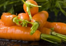 Free Carrots Stock Images - 2316724