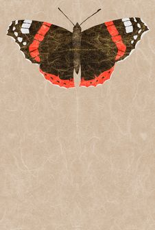 Free Red Admiral Royalty Free Stock Images - 2318319