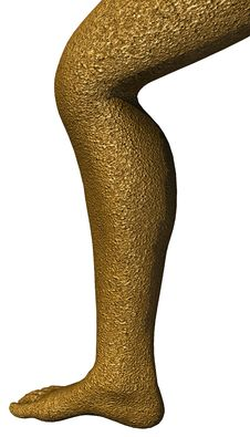 Free 3D Render Of A Human Leg Stock Photo - 2318360