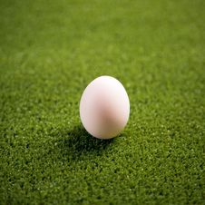 Free Egg On The Lawn Stock Images - 23101384