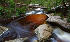 Free Natural Tannin Colored Stream In The Mountains Royalty Free Stock Images - 23101939