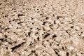 Free Dry Land Stock Image - 23111471