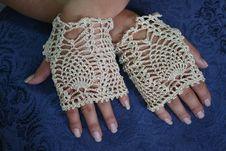 Free Fancy Fingerless Gloves Stock Image - 23121811