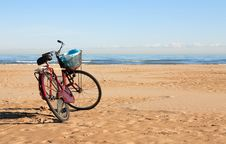Beach Cleaning Royalty Free Stock Images
