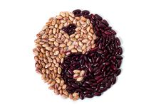 Free Common Beans Stock Photo - 23129150