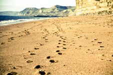 Free Footsteps In The Sand Stock Images - 23130014