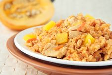 Free Pilaf With Chunks Of Chicken And Pumpkin Royalty Free Stock Image - 23132016