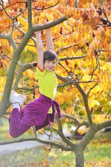Free Girl Climbed On Tree Stock Photos - 23135713