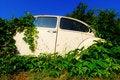 Free Abandoned Car Royalty Free Stock Photo - 23149915