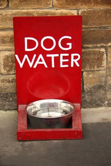 Free Dog Bowl. Stock Photo - 23145610