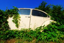 Free Abandoned Car Royalty Free Stock Photo - 23149915