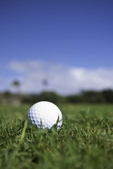 Free Golf Ball Lies In The Fairway Stock Image - 23162941