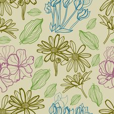 Free Seamless Pattern With Flowers Stock Image - 23163221