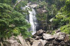 Free Beautiful Rain Forest And Waterfall Royalty Free Stock Photo - 23175035