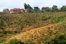 Free Small Village On Top Of A Rice Field Stock Image - 23184871