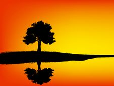 Free Tree Silhouetted And Reflection Royalty Free Stock Photos - 23187918