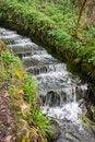 Free Cascade Royalty Free Stock Photo - 23193565
