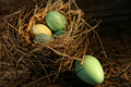 Free Speckled Eggs In Nest Royalty Free Stock Photography - 23194027