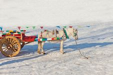 Free Carriage In The Snow Royalty Free Stock Image - 23195056