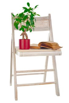 Ficus Tree, Vintage Book And Garden Chair Royalty Free Stock Photography