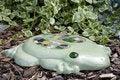 Free Flat Frog Royalty Free Stock Photos - 2326158