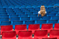Free Blond Amongst The Chairs Stock Images - 2326394
