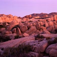Free Joshua Tree Park Stock Photos - 2322153