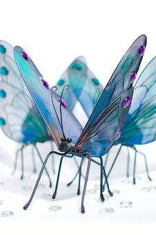 Free Butterflies Gathering Around Royalty Free Stock Photo - 2325405