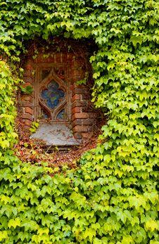 Free Window Royalty Free Stock Photo - 2325415
