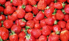 Free Strawberries Royalty Free Stock Photos - 2325998