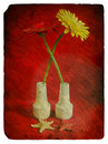 Free Still Life With Flowers Gerberas. Old Postcard. Stock Photo - 23206480