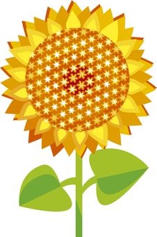 Free Yellow Sunflower Royalty Free Stock Image - 23204386