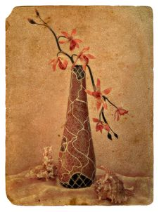 Still Life With Orchid. Old Postcard. Royalty Free Stock Photography