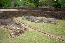 Free Sigiriya Frescoes Royalty Free Stock Photo - 23206665