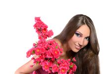 Free Beautiful Girl Professionally Pink Makeup Stock Image - 23211391