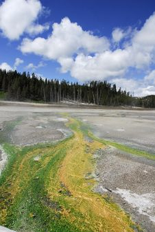 Free Sulphur Deposits In Hot Springs Of Yellowstone Stock Photos - 23211483