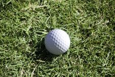 Free Golf Ball Lies In Long Grass In The Rough Stock Photos - 23229653