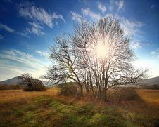 Free Autumn Landscape Stock Photo - 23230030