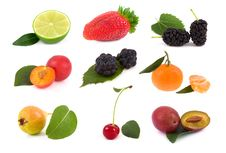 Free Collection Fruit Royalty Free Stock Photo - 23235175