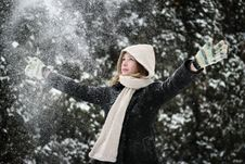Free Winter Time Stock Image - 23245871