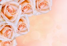 Free Floral Border.roses Stock Image - 23262611