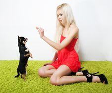 Free Pretty Woman Blond With Her Friend - Small Dog Stock Image - 23266861