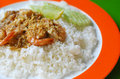 Free Stir-fried Shrimp With Garlic Stock Images - 23271264